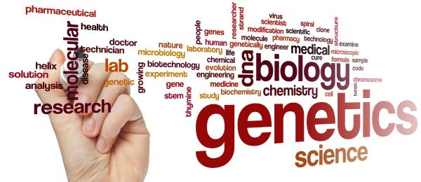 How to become a genetic counsellor